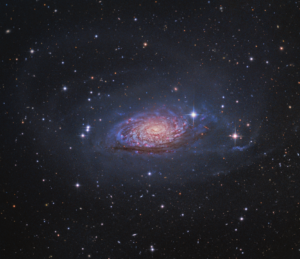 M63 by Tony Hallas