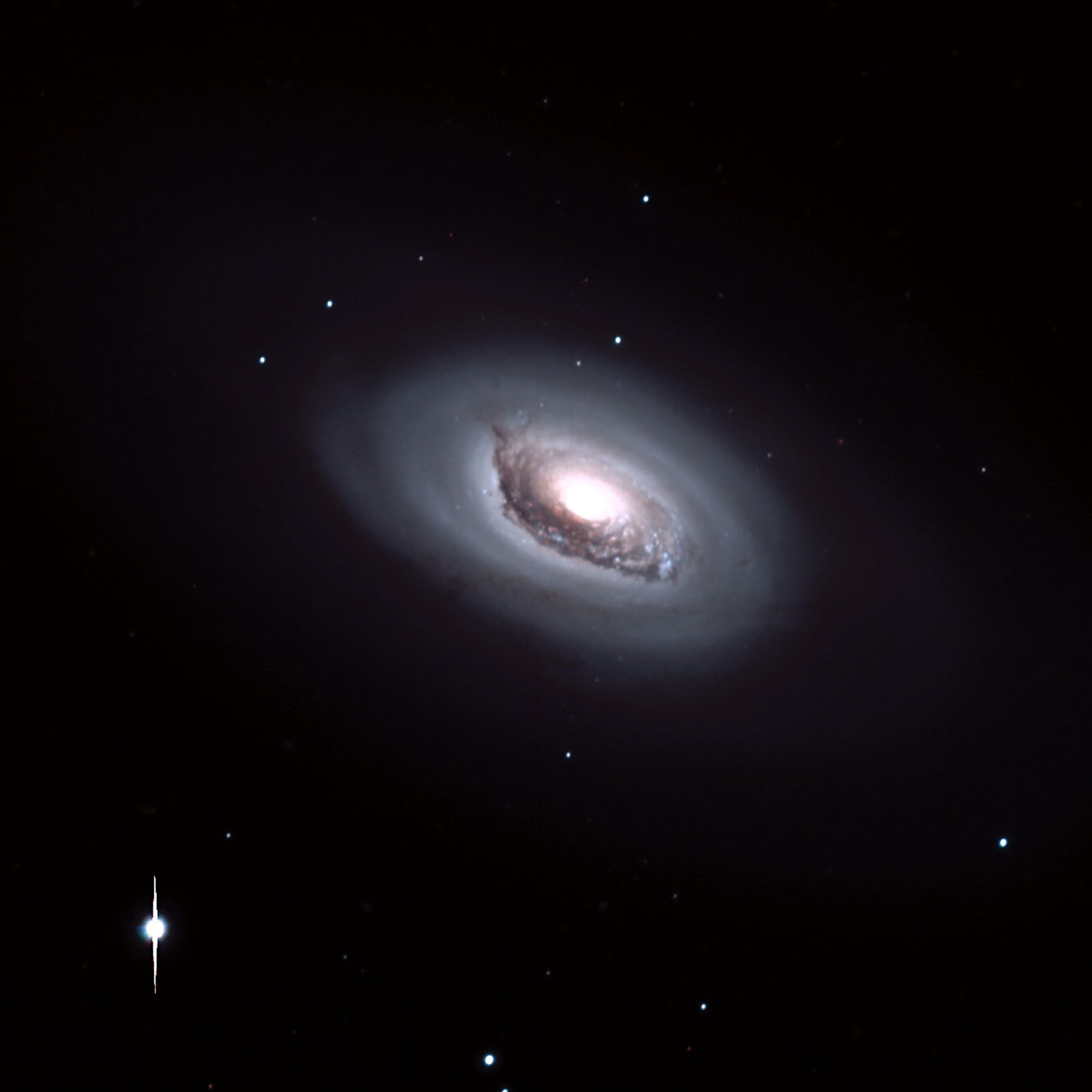 Black Eye Galaxy, M64, in Red and Blue Filters