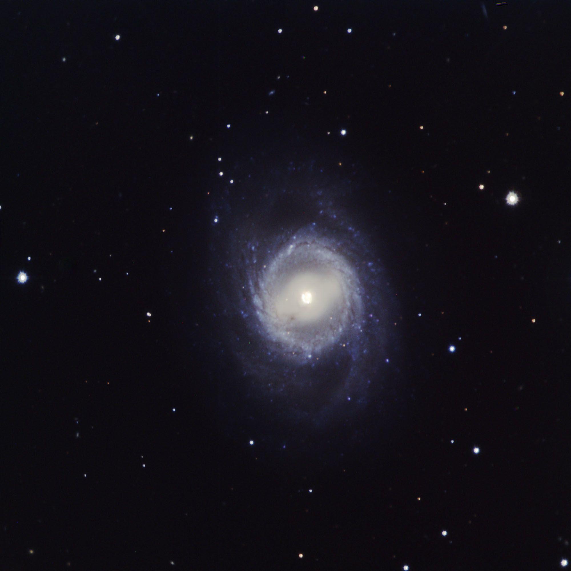 Galaxy M95 (NGC 3351)