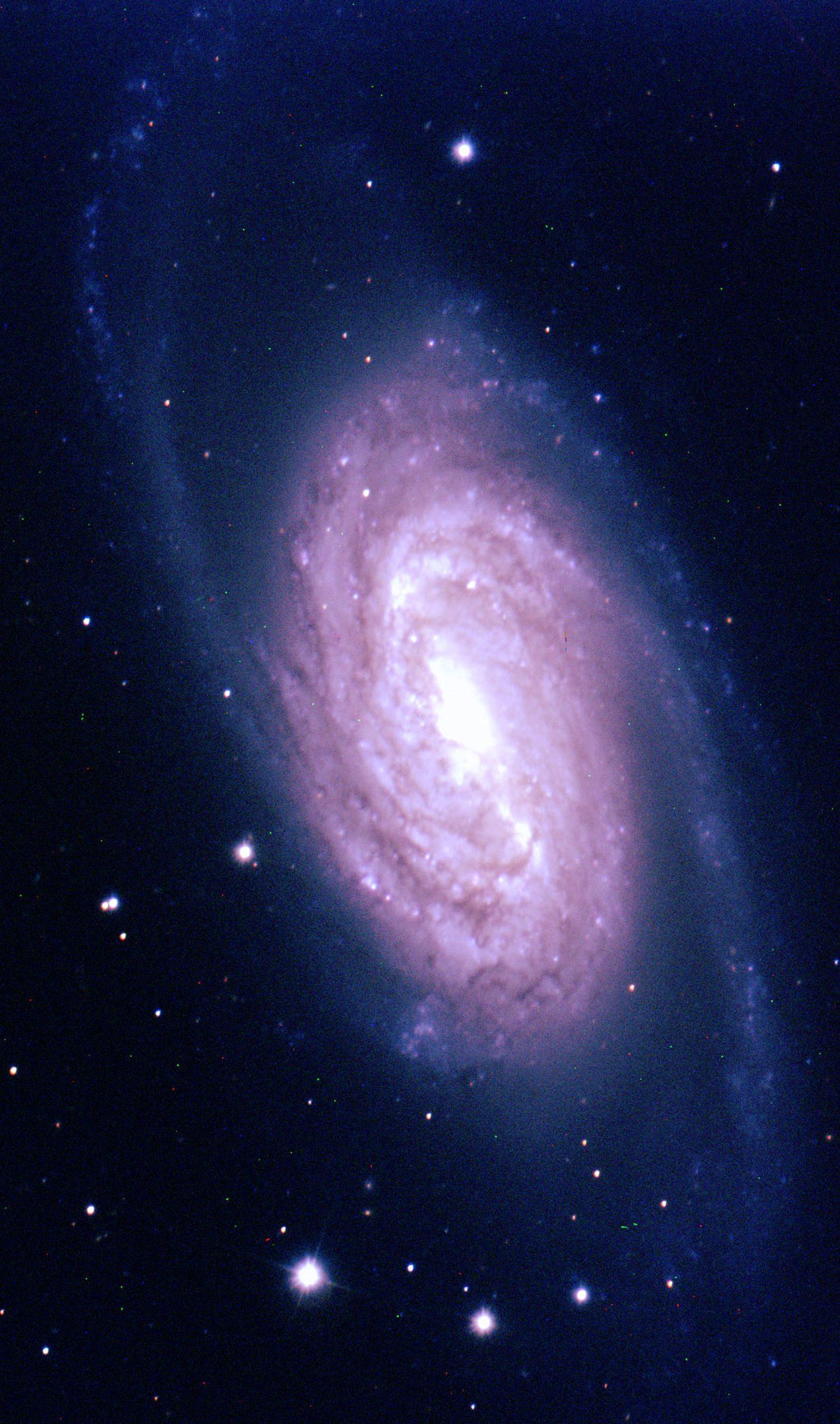 Galaxy NGC 2903