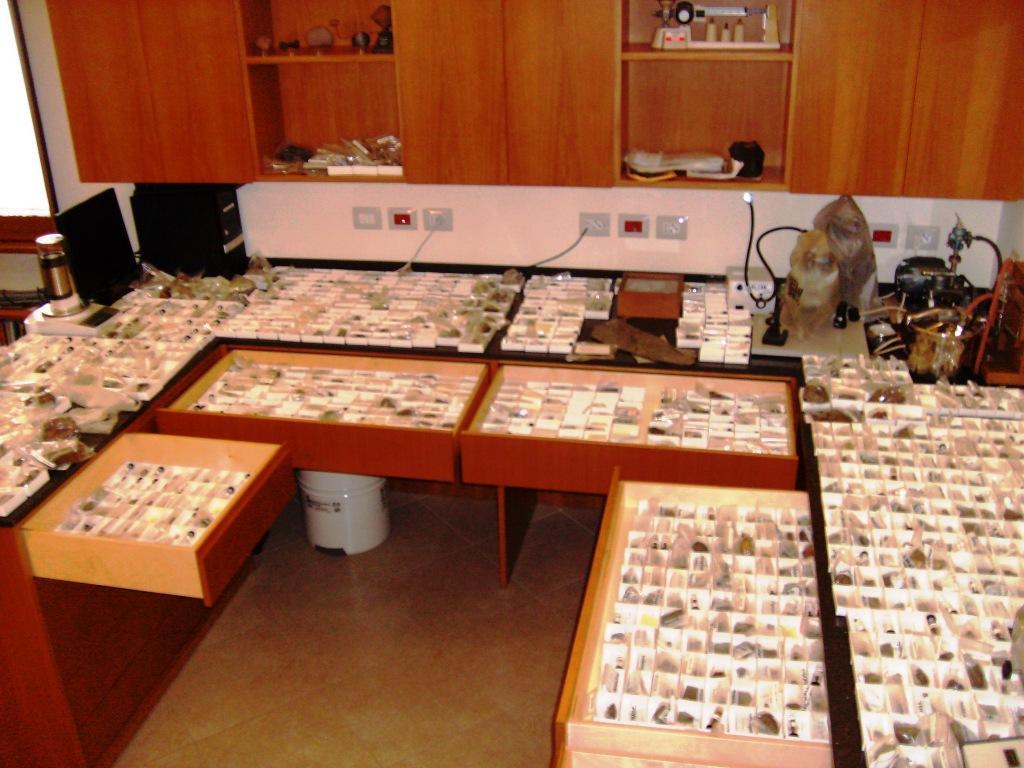 Vatican Meteorite Collection