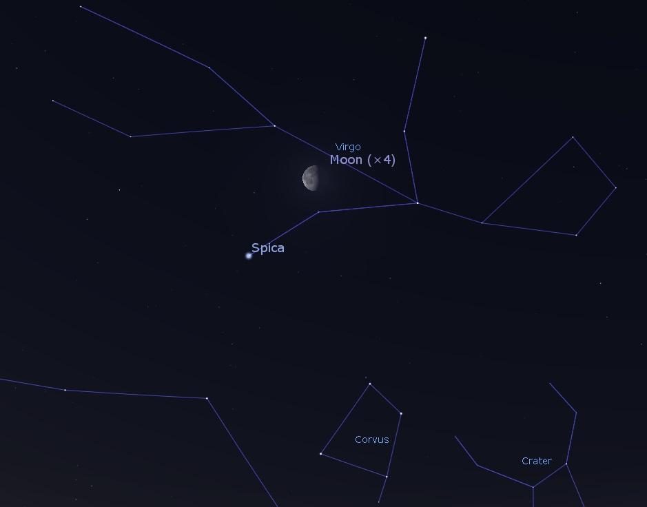 Southwestern predawn sky