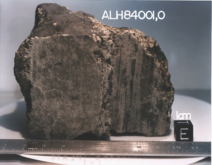 The meteorite, ALH54001, that started the whole flurry of looking for life on Mars
