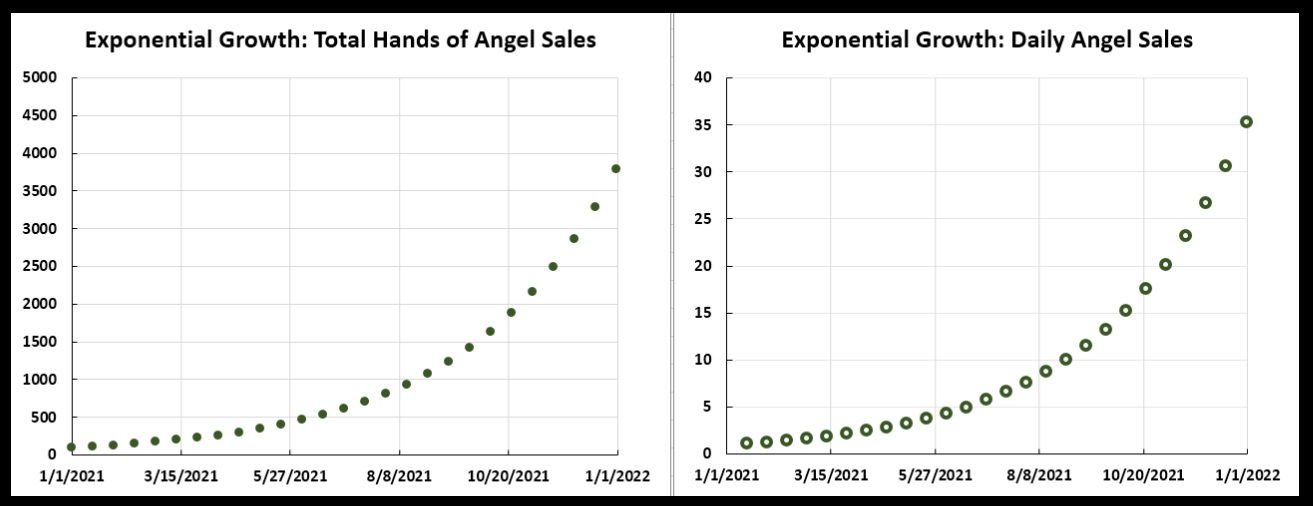 Hands of an Angel sales: at left is the total sales over the year 2021; at right is the daily sales.