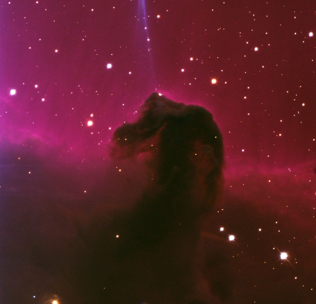 Just another gratuitous pretty astropicture, in this case, the Horsehead Nebula as imaged at the Vatican Advanced Technology Telescope.
