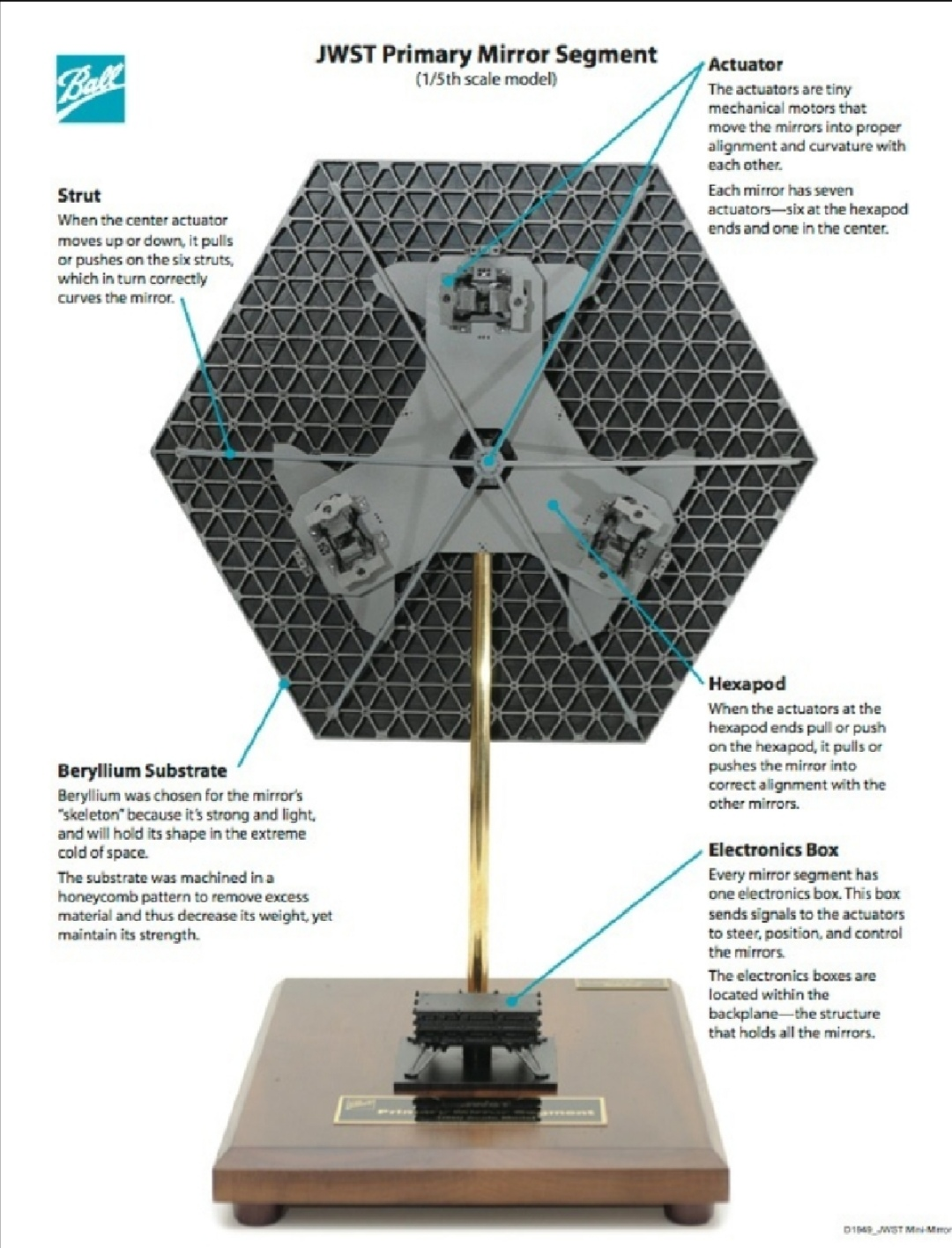 The Back skeleton of one James Webb Space Telescope Mirror showing its honeycomb sections making the entire hexagon strong but lightweight