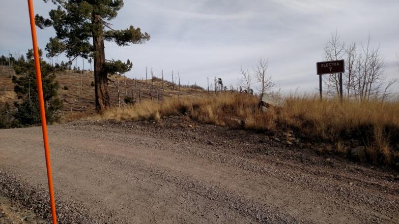 Mt. Graham access road